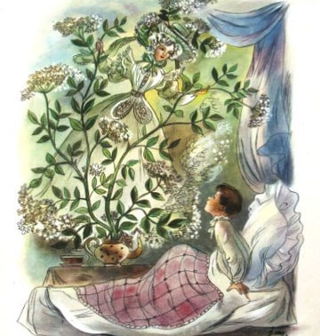 Картинка к сказке Бузинная матушка