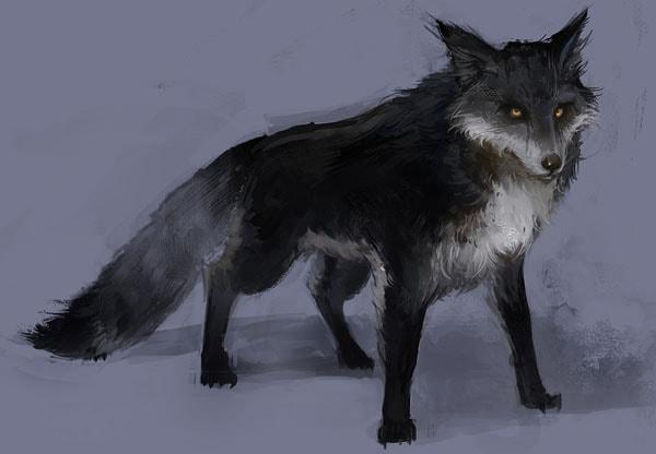 Картинка к сказке Чёрная лисица