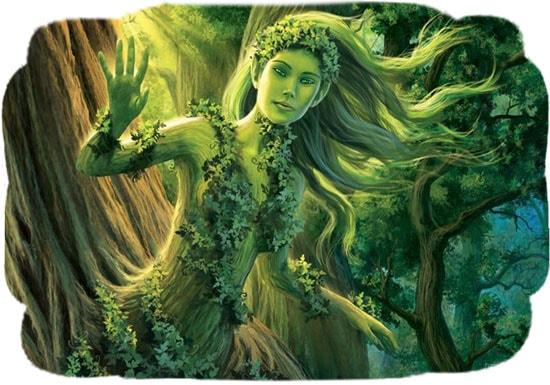 Картинка к сказке Дриада