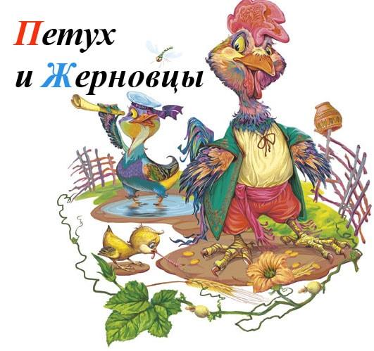 Картинка к сказке Петух и жерновцы