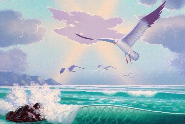 Картинка к сказке Почему чайки белые