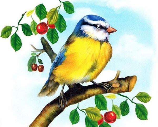 Картинка к сказке Синичкин календарь