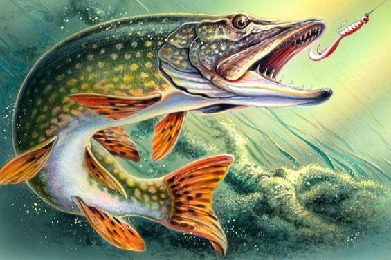 Картинка к сказке Морской чертёнок