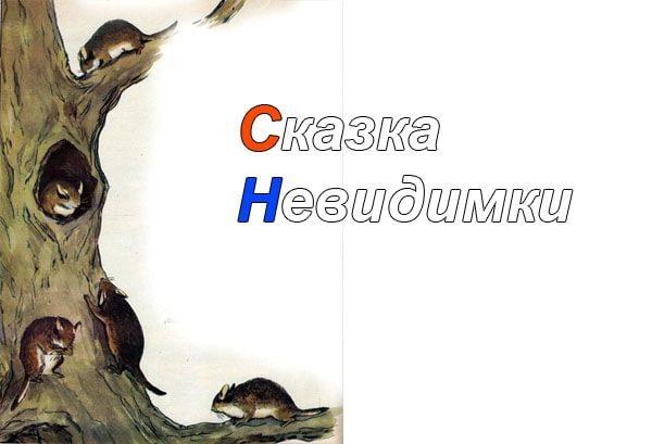 Картинка к сказке Невидимки
