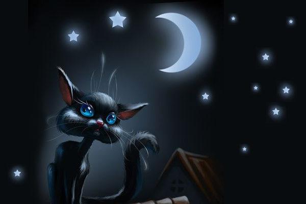 Картинка к сказке Ночная сказка
