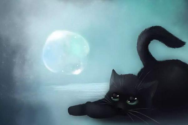 Картинка к сказке Ну что ты, кошка!