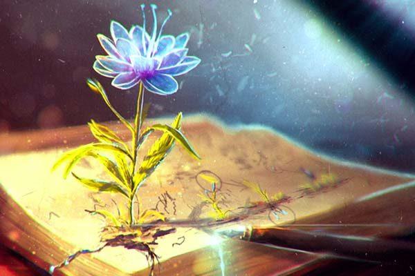 Картинка к сказке Немая книга