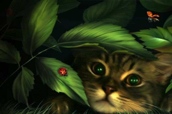 Картинка к сказке Лиса и кот