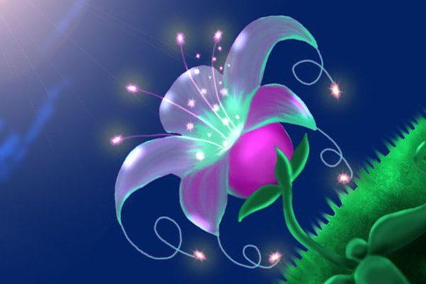 Картинка к сказке Отпрыск райского растения