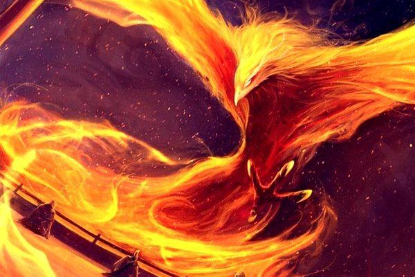 Картинка к сказке Птица феникс