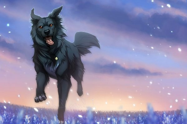 Картинка к сказке Пёс и воробей