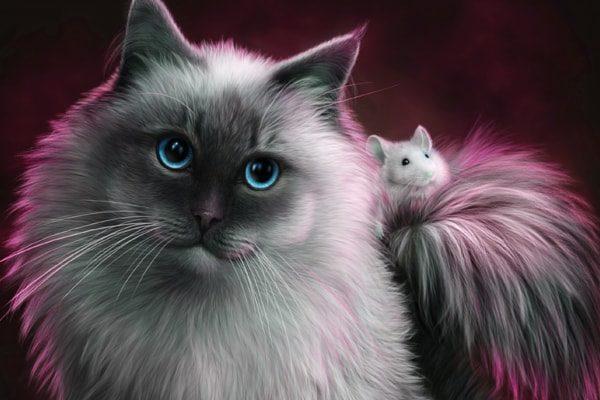 Картинка к сказке Дружба кошки и мышки