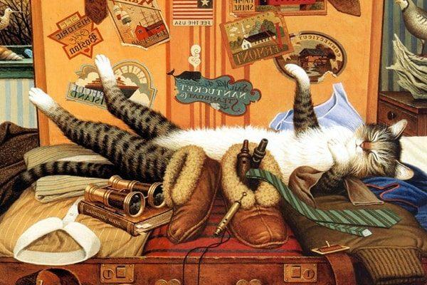 Картинка к сказке Кот-путешественник