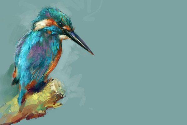 Картинка к сказке Птичка