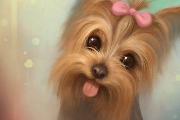 Картинка к сказке Страна, где живут одни собаки