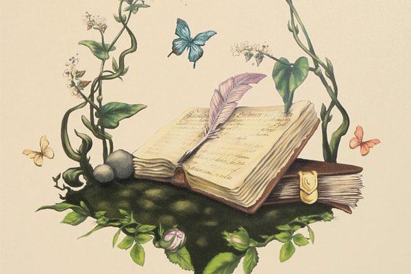 Картинка к сказке Трактат о феях добрых и злых